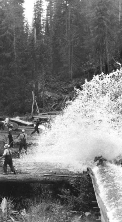 """A flume and """"high ball"""" landing operation, note the size of the logs."""